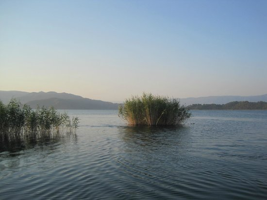 Dalyan Special Environmental Protection Area: The lake