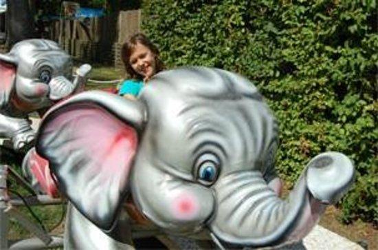 Parc de Grinyland: Manège des éléphants