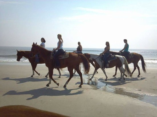 Amelia Island Horseback Riding Morning Ride On Fernadina Beach Fl