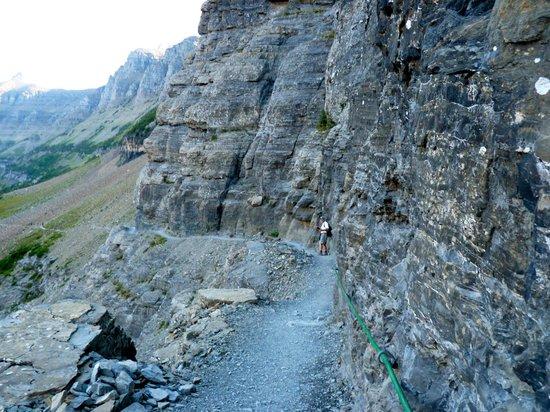 The Garden Wall On Highline Trail Picture Of Highline Trail Glacier National Park Tripadvisor