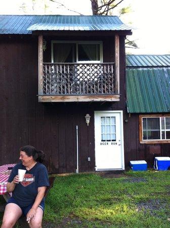 Twin Pine Lodge : Deer run
