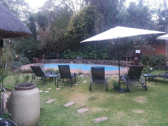 Sitatunga Guest Lodge: the garden pool