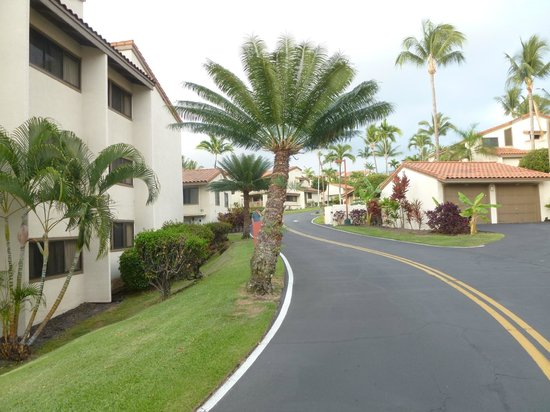Kona Coast Resort: The road to the dining area