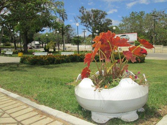 Garanhuns, PE: Vaso da praça feito com pneu reciclado