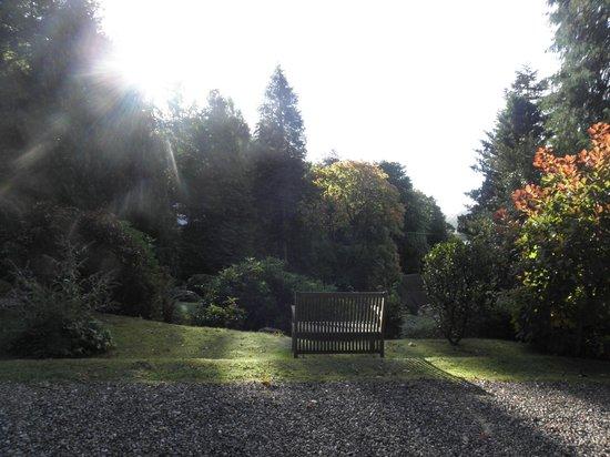 Torrdarach House: Le jardin