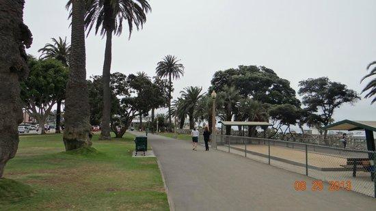 Palisades Park : Park View