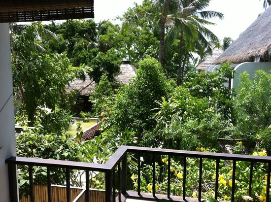 Mimosa Resort & Spa: View from room of outside pond and gardens