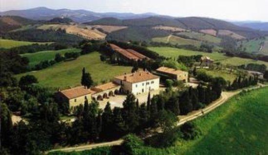 Fattoria Biologica Poggio Foco : Poggio Foco estate: organic vineyard, spectacular wines!