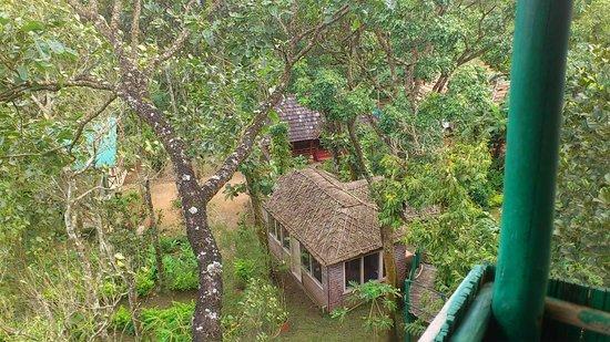 Manayath Heritage: Vue des cottages de la cabane dans les arbres