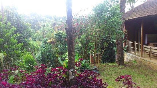 Manayath Heritage: Jardin