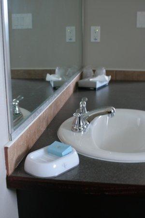 Surrey Central Inn: Bathroom sink