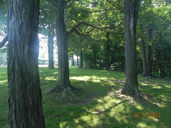 Westfield / Lake Erie KOA: Ottoway Park located directly across from the KOA