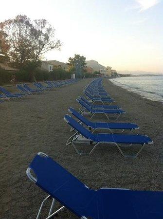 Aquarius Pool Apart Hotel: great beach