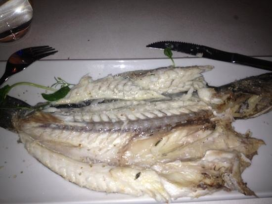 viszooi: grilled seabass with salt & olive oil