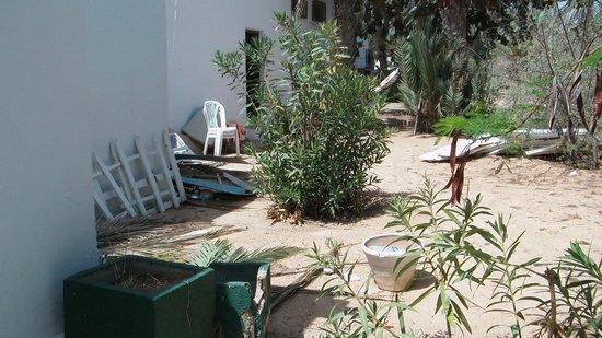Sangho Club Zarzis : a coté de la piscine ( derrière les box de l'animation) le débarras faudra les jeter ou les recy