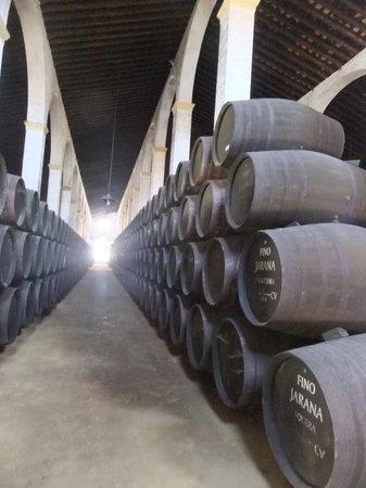 Bodegas Lustau : Barrels of nectar