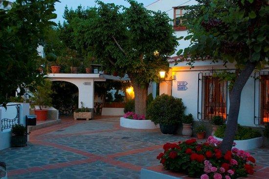 Alcadima Hotel: Jardín / Garden