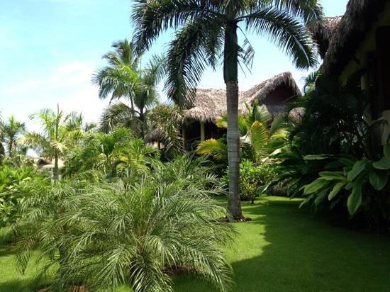 Zoetry Agua Punta Cana: Paisaje