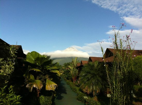 Hotel Arenal Montechiari: View of Arenal Volcano from the pool
