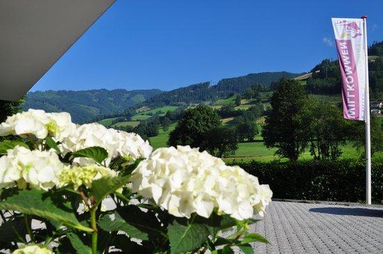Haus Piesendorf: view front