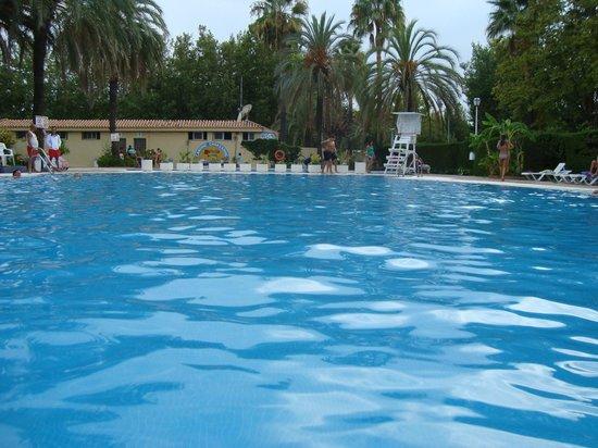 Camping Marbella Playa: piscina