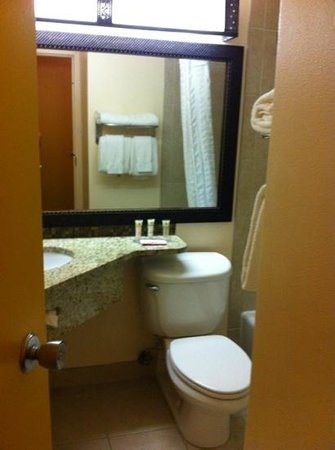 BEST WESTERN PLUS Rio Grande Inn: bathroom