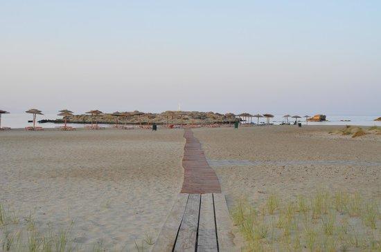 Venus Hotel: η διαρομή προς τη παραλία