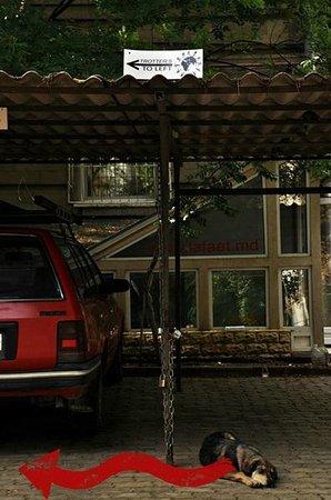 Trotter's Den Hostel: Follow the Signs