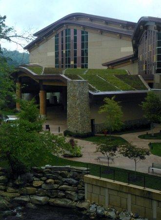 Harrah's Cherokee Hotel: Native grasses on the roof