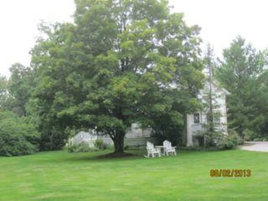Martha's Vineyard Bed & Breakfast: Actually sat and read a little in the rocking chairs.
