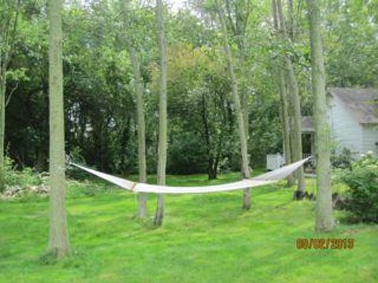 Martha's Vineyard Bed & Breakfast: Inviting hammock on the grounds.