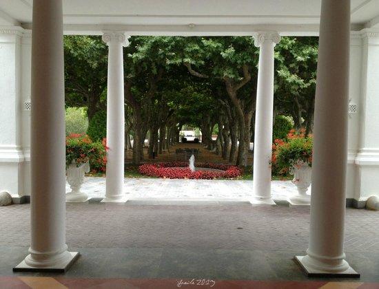 Hotel Balneari Termes Orion: El paseo de los plátanos desde la entrada