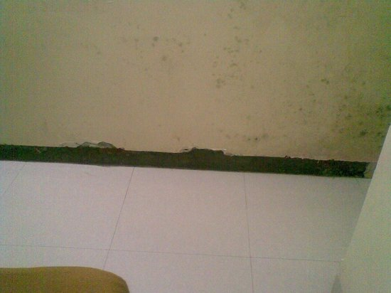 Sai Residency Hotel: Walls cracked near the floor