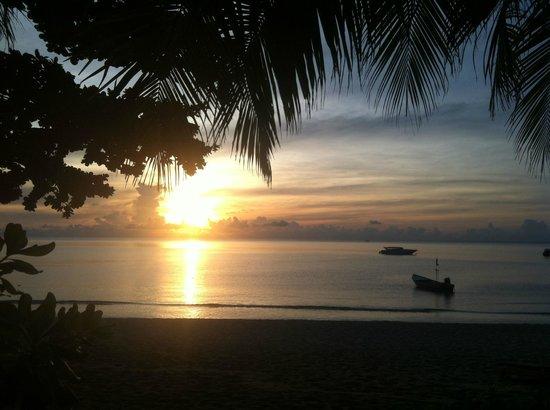 Anantara Rasananda Koh Phangan Villas: Blick von unserer Terrasse