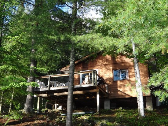 Horseshoe Island Camp: Cabin #7