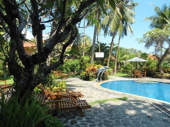 Banyualit Spa n' Resort : jardin et piscine de l'hotel