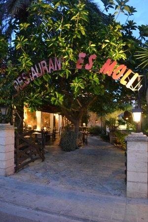 Restaurant Es Moli de Santanyi : l entrée