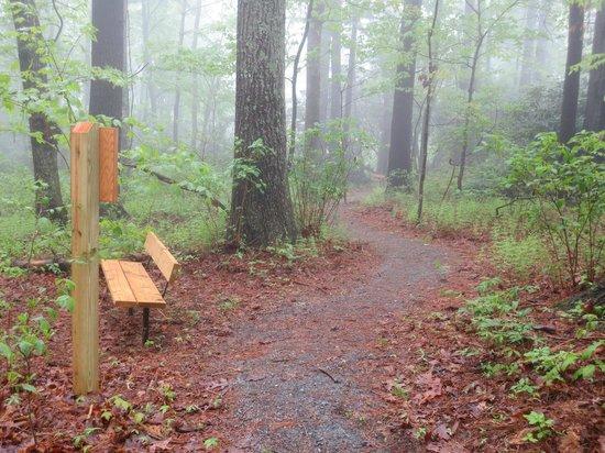 Saint Mary's Episcopal Church: Trail