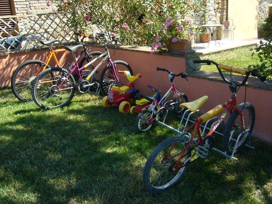 Agriturismo Fossederi: Bici per tutte le età