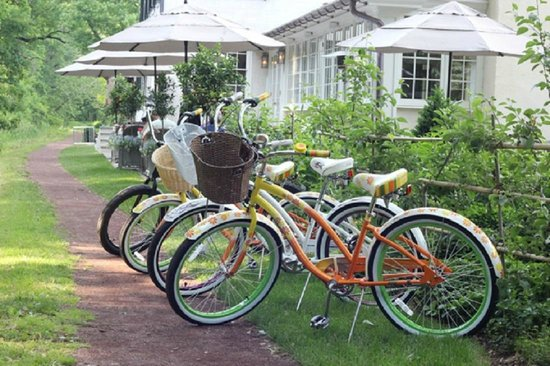 Golden Pheasant Inn: Bikes on the towpath