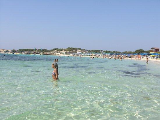 Asterias Beach Hotel: Пляж
