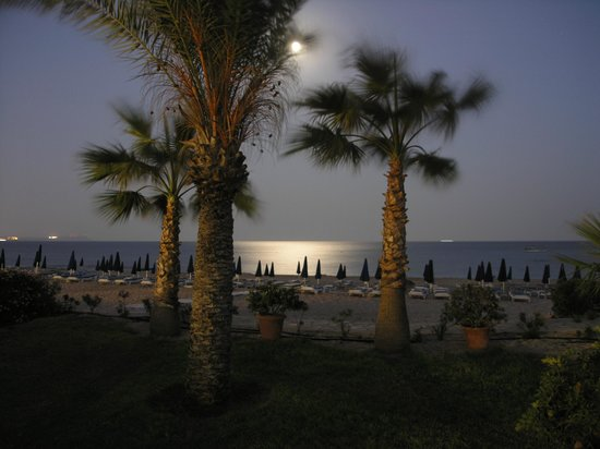 Asterias Beach Hotel: Хорошая, зеленая территория