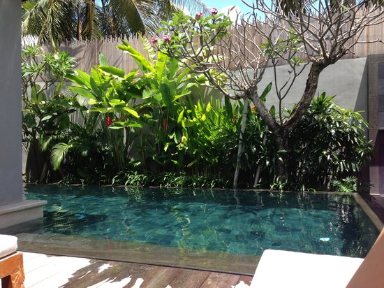 KoenoKoeni Villa: Pool