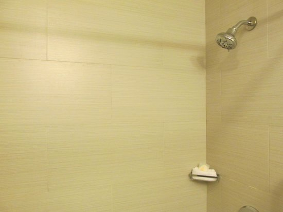 Comfort Inn Midtown West: Room 705 Shower