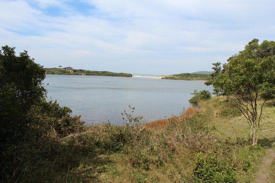 Meio Lake: Outra vista da trilha que rodeia o lago