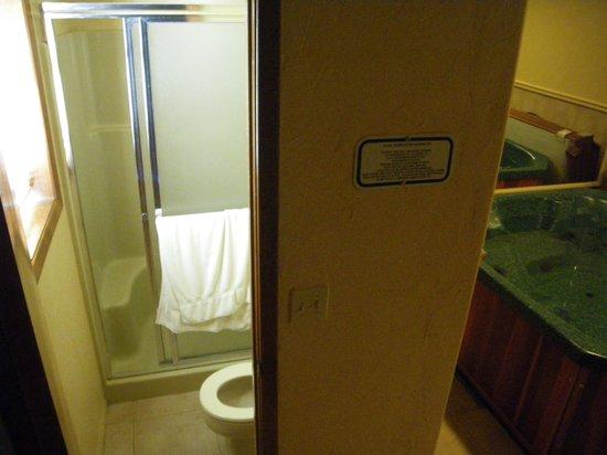 Wyndham Pagosa: Bathroom on bottom floor
