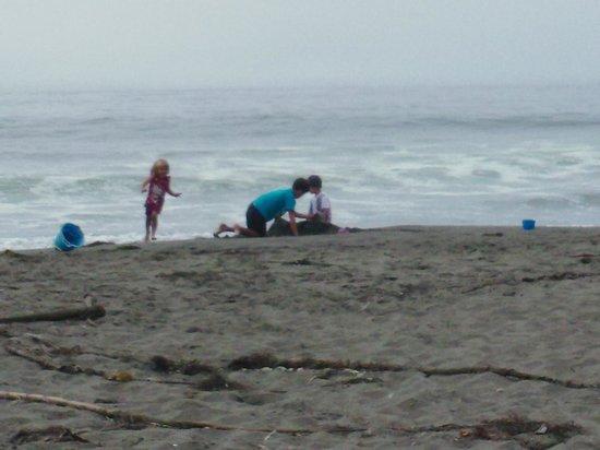 Westport Beach / N Mendocino Coast KOA: The nearby beach