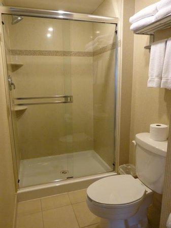 Holiday Inn Express & Suites Surrey: Large shower