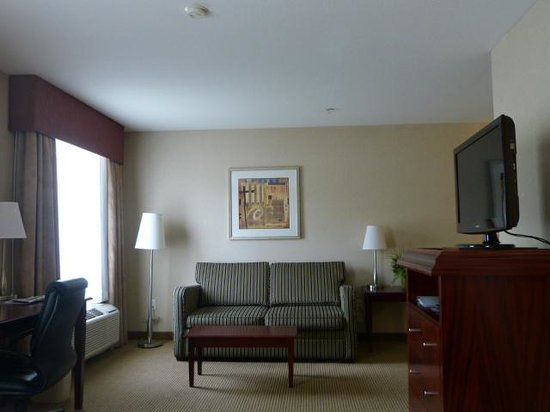 Holiday Inn Express & Suites Surrey: Lounge area