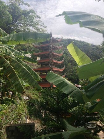 Linh Son Truong Tho pagoda: The pagoda  at the top